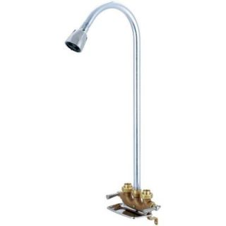 Central Brass 1 Spray Cast Brass Utility Shower Faucet in Rough Brass 0477