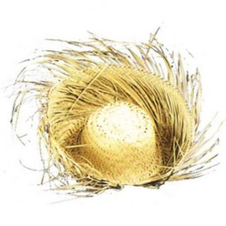 Bird's Nest Woven 4 in. Brim Straw Hat Halloween Costume Accessory Hawaiian Costume Clothing