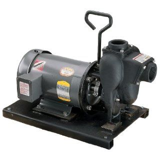 "Banjo 234PIE51 2"" Cast Iron Pump with 5.0 HP Single Phase Electric Motor Industrial Pumps"