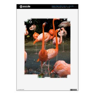 A number of Flamingos Decal For iPad 3
