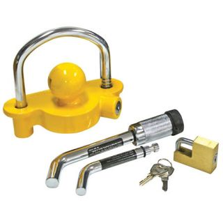 Reese Tow and Store Anti Theft Lock Kit 39441