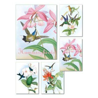 Hummingbirds   Box Set of 20 Assorted Note Cards and Envelopes Health & Personal Care