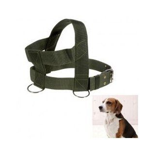 HP00013G Best Quality Canvas Adjustable Pet Dog Harness Shoulder Strap Leash with D ring   Green Cell Phones & Accessories