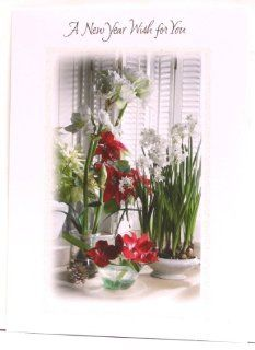 "Happy New Year Cards ""A New Year Wish for You"" with flowers of 6 Holiday Design Studio Health & Personal Care"