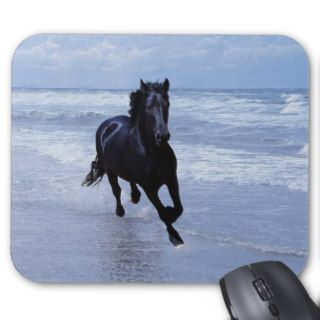 A horse wild and free mouse pad