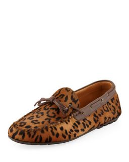Mens Leopard Printed Calf Hair Driver   Ralph Lauren Black Label   Leopard