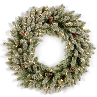 Snowy Concolor Fir Pre Lit Wreath with 100 Clear Lights