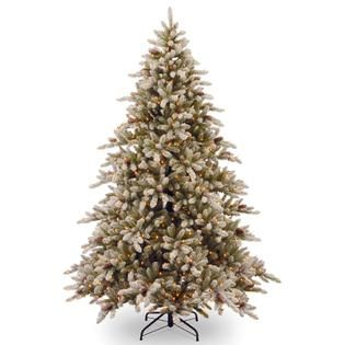 National Tree Company 9 ft. Snowy Concolor Fir Tree with Clear Lights