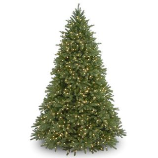 7.5 Foot Jersey Fraser Fir Tree with Clear Lights    National Tree Company