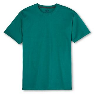 Fruit of the Loom Select® Mens Teal Taunt Short Sleeve Tee